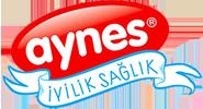 aynes-logo