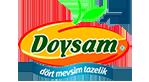 doysam-logo